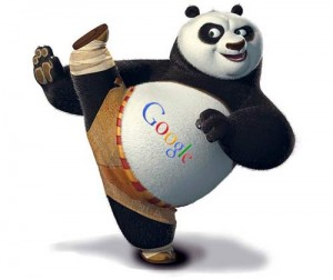 google-panda updates